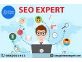 hire-seo-expert-in-bangalore-small-0
